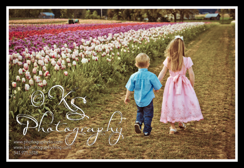 woodburn tulip festival